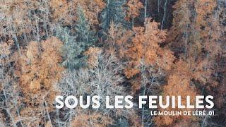 SOUS LES FEUILLES | Le Moulin de Léré .01