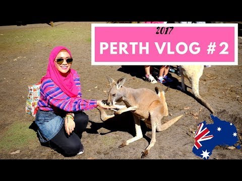 PERTH TRAVEL VLOG #2 2017 | CAVERSHAM WILDLIFE PARK | FATHIN ZULKIFLI (Malaysian)