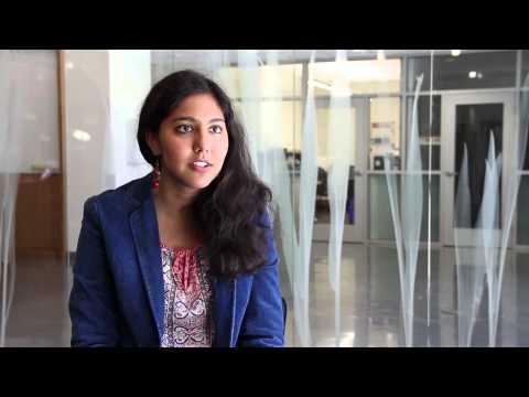 New Major For Stanford's Bioengineering Department