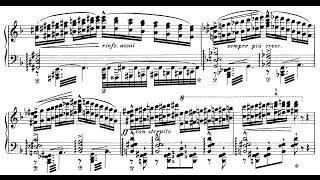 Liszt: Réminiscences de Don Juan, S.418 (Okada)
