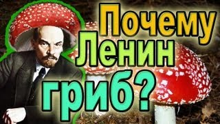 Почему Ленин - гриб?