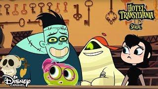 Hotel Transylvania - najnowsze odcinki!  Oglądaj w Disney Channel!