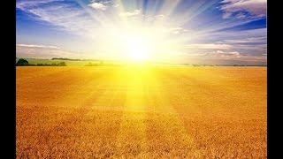 The Parable of the Sun (Son) Thumbnail