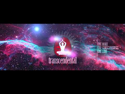 Transcendental Minds: Consciousness, Meditation, & The UFO Connection