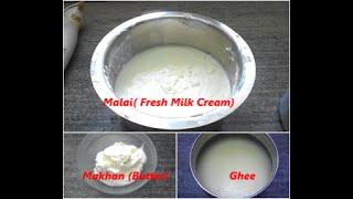 كيف تصنع الزبدة و السمن من مالاي (الحليب الطازج كريم) في المنزل (باللغة الهندية)