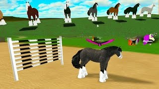 Crazy Horse Racing Race Track - Let's Play Online Roblox Horses Games - Honeyheartsc