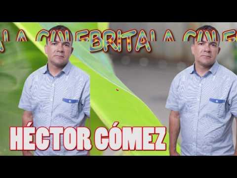 La culebrita - Hector Gómez