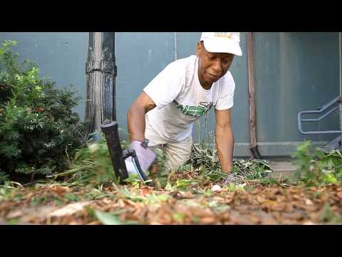 Serius Energy Cleans up Hidden River Park in Downtown Pontiac