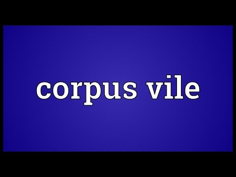 Corpus vile Meaning