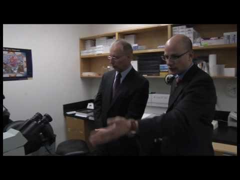 BC cancer researchers advance patient treatment