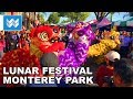 Chinese Lunar New Year Festival Lion Dance 2019 at Monterey Park Walk Tour 🎧 3D Binaural Audio 【4K】