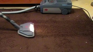 Restoring flattened carpet pile with Lux D790 Royal