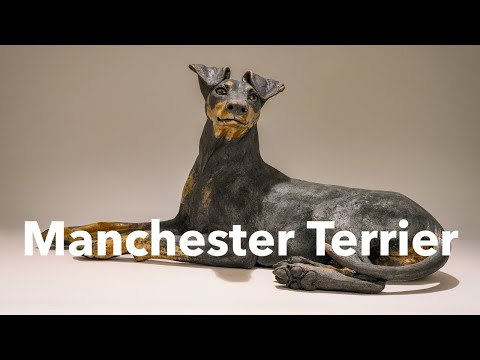 The Making of a Manchester Terrier Dog Sculpture