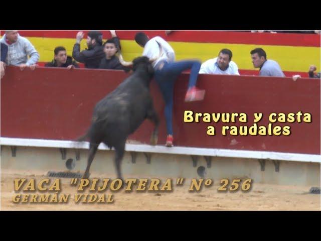 ESPECTACULAR ACTUACIÓN PIJOTERA Nº256 GERMÁN VIDAL