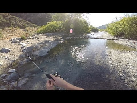 lytle creek trout fishing youtube