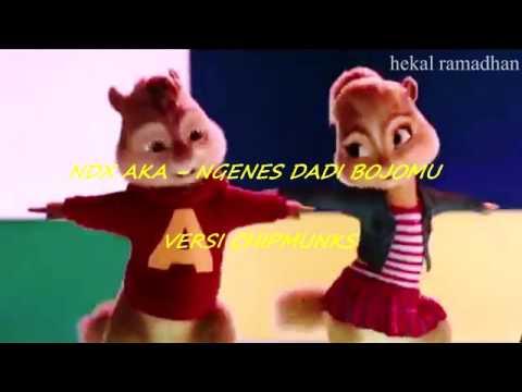 NDX AKA - NGENES DADI BOJOMU (VERSI CHIPMUNKS)