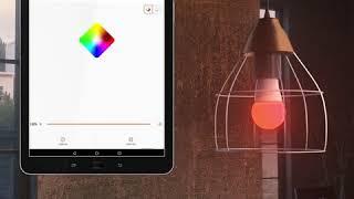 코스트코 온라인몰 | 레드밴스 LED 스마트 전구 2개 2