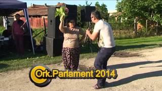 ORK PARLAMENT 2014 SLIVO POLE