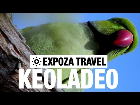 Keoladeo Vacation Travel Video Guide