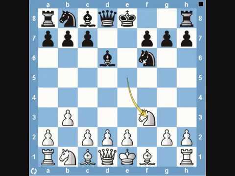 Chess Traps- Bird's Eye View