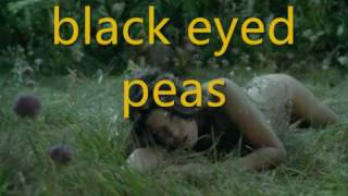 black eyed peas meet me halfway lyrics