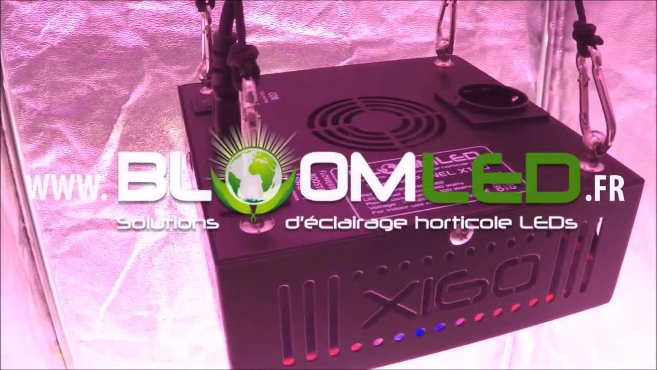 Spectrapanel Horticole Présentation Led Lampe X160 EIW2D9H