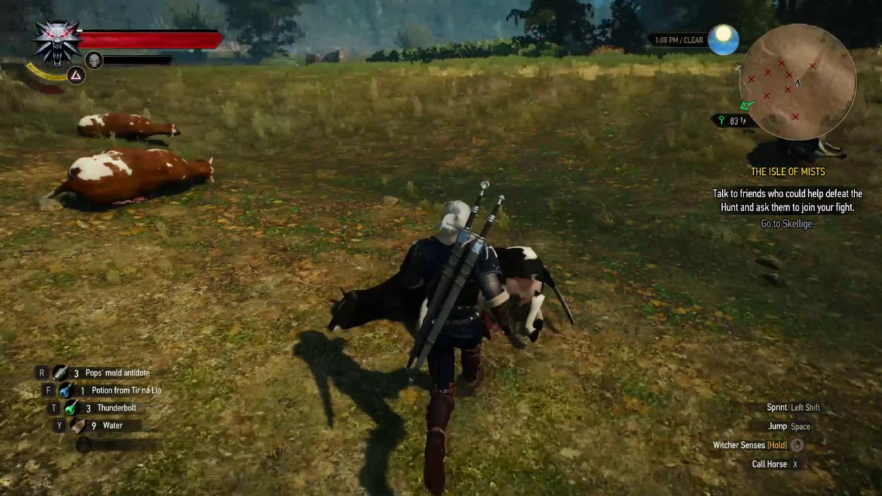 The Witcher 3 Money Glitch Area WORKING 2017 No Cow King ( low level  friendly )