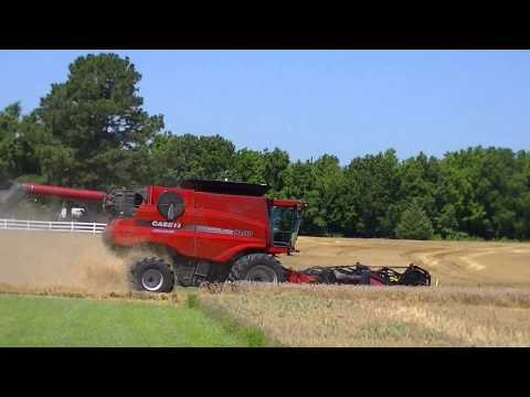 2015 Winter Wheat Harvest Gates County NC
