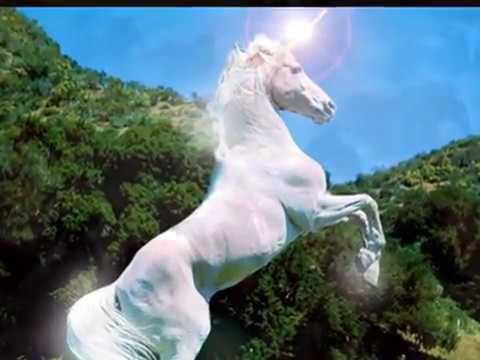 XUÂN GIÁP NGỌ 2014: Ngựa phi đường xa.