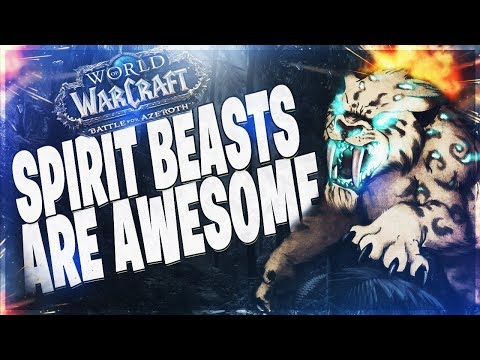 BM HUNTER BFA PVP   SPIRIT BEASTS ARE AWESOME! BATTLE FOR AZEROTH 80