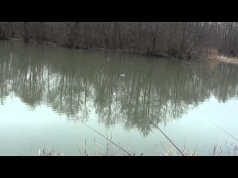 5 Cum pescuim cu plase ? ... Pescuit la plase pe Lacul Boteni 1, film unicat pe youtube from YouTube · Duration:  12 minutes 50 seconds