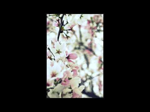 Peggy Lee - Fever (Stavroz remix)