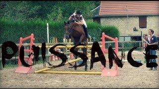 Puissance poneys et chevaux