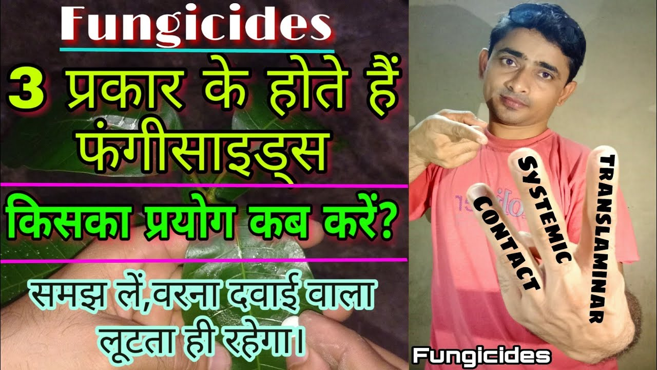 फंगीसाइड - कितने प्रकार के?, किसका प्रयोग कब करें?    Fungicides     Classification of Fungicides