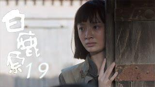 白鹿原 | White Deer 19【DVD版】(張嘉譯、秦海璐、何冰等主演)