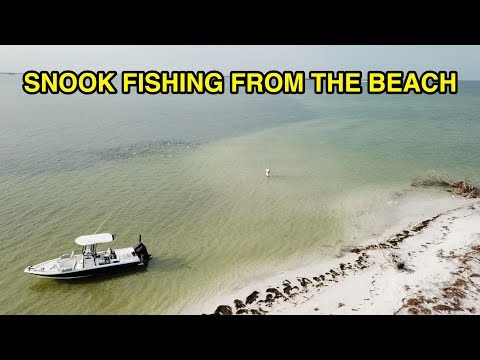 SNOOK FISHING: How To Catch Snook From The Beach (Wade Fishing)