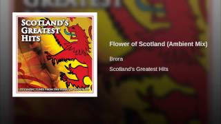Flower of Scotland (Ambient Mix)