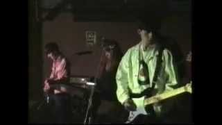 "The Cudgels ""Watermeadow Dream"" Live at The Mag Leicester 1992"