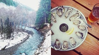 Hamma Hamma Rec Area and Oyster Saloon | PNW DAY TRIP! | Full Time RV Life || AT HOME ON THE GO
