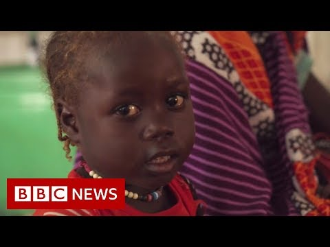 The ongoing struggle for peace in Darfur - BBC News
