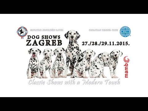 Dog Shows Zagreb 27.-29.11.2015.