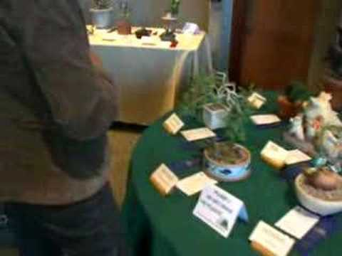 Colorado Cactus & Succulent Society 2008  - Show Area