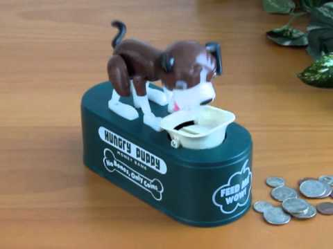 Hungry Puppy Coin Bank 47073 Youtube
