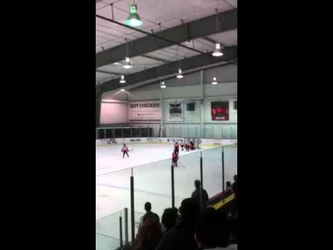 Aaron rec hockey goal