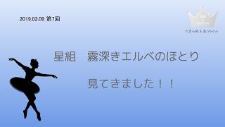 星組公演 霧深きエルベのほとり感想 【第7回 夫婦deタカラヅカ】