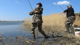 Ловля крупного карася на фидер. Весенняя рыбалка