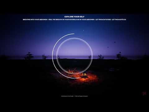 Playne: The Meditation Game lv 2 (fireflies, wind) |