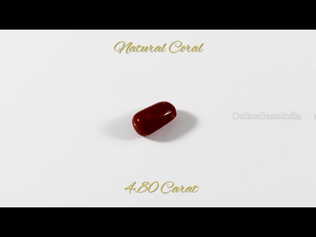 NATURAL RED CORAL (ITALIAN ) 4.80 CARAT