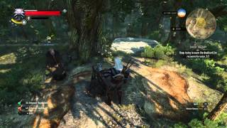 The Witcher 3: Wild Hunt  SHOCK THERAPY keep trying to scare the druid until he recover his voice