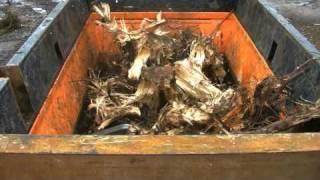 Metso Denmark M&J 4000 Shredder green waste and tree stumps